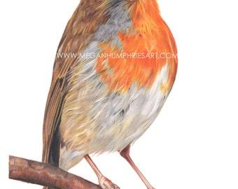 Little Red Robin - Fine Art Giclée Print - nursery art - Room Decor - Wall Art - bird art