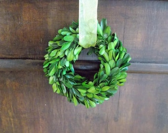"5"" Boxwood Wreath-Mini Wreath-Small Wreath-Mini Boxwood Wreath-Preserved Boxwood-Wedding Decoration-Door Hanger-Year Round Wreath"