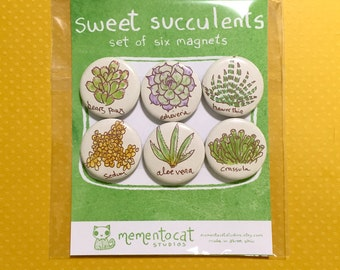 sweet succulents magnets - set of 6