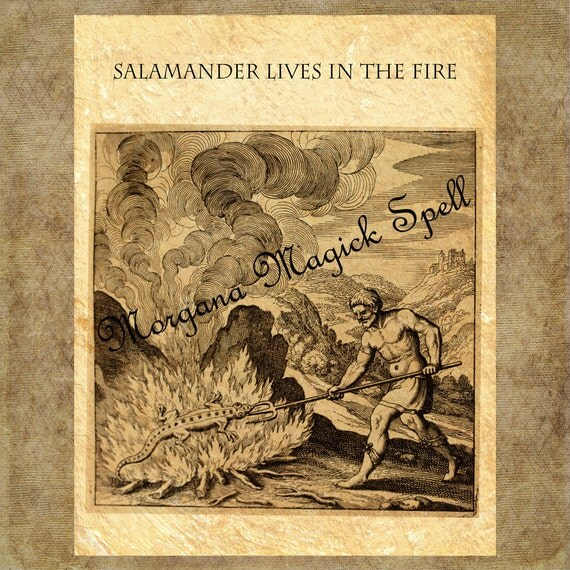 The Occult Fire Salamander