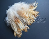 Natural feathers rooster schlappen, striped beige brown red chinchilla real feathers for millinery, crafts / 4-6in (10-16cm) long / F142-4L