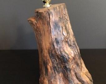 Apple Wood Lamp