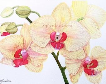 "Yellow Phalaenopsis Orchids, Original Watercolor Illustration, 12""X9"""