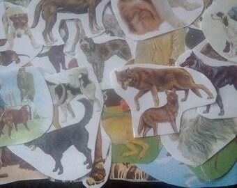Vintage 1970s Paper Dog Ephemera , Scrapbooking, Collage, Crafting