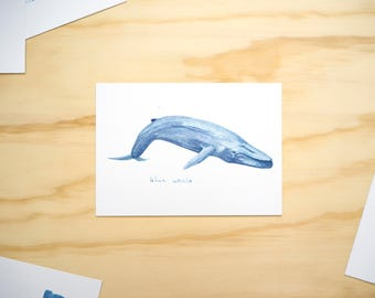 Blue Whale Watercolour Illustration Print // A6 Print Postcard // Sea Animals // Nursery Bedroom Decor // Animal Print