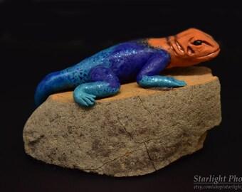 Lizard, Lizard Sculpture, Lizard Art, Polymer Clay, Clay Lizard, Agama Art, Reptile Art, Clay Lizard Sculpture, Clay Sculpture, Clay Art