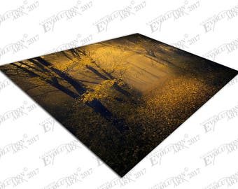Print on Canvas Mysterious foggy forest with a fairytale look X1166