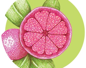 Pink Citrus Art (instant digital download)