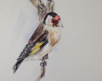Goldfinch goldfinch putter original aquarelle A5