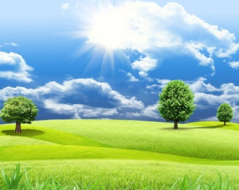 Green Grassland Backdrop - sunshine, spring, blue sky, white cloud - Printed Fabric Photography Background W1256