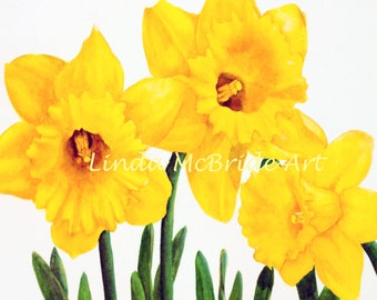Yellow Jonquils 3x3 gift enclosure card from my original watercolor painting with envelope.
