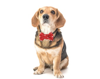 """Reflective dog bow tie - 30% of sales donated to dog shelters """"dog bow tie"""" symbol for animal support"""