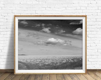 "black and white photography, large art, printable art, instant download printable art, digital download, landscape prints - ""Parting Ways"""