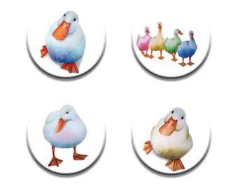 A pack of 4 Maria moss Artist pop art Ducks design Pattern weights fabric weights