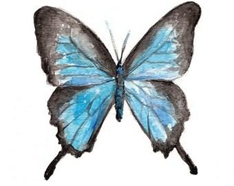 Art Print-Butterfly