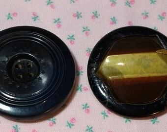 Vintage Celluloid Buttons 2 Large Size