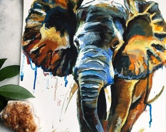 Elefante - Art Print