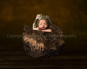 Newborn Digital backdrop / background / Newborn prop nest /basket