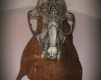 Spirit Skull (Racoon)