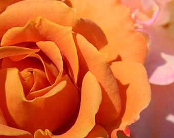 Peachy Keen Love
