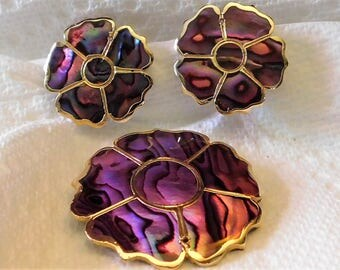 Abalone Shell Pin and earring set