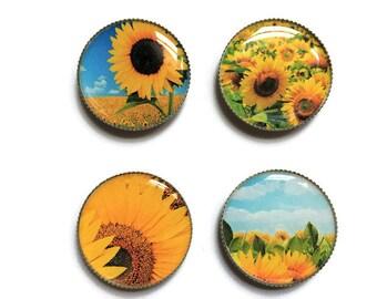 Sunflower magnets or sunflower pins, flower magnets, flower pins, refrigerator magnets, fridge magnets, office magnets