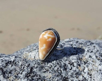 Hawaiian cone seashell ring size 8
