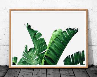 Palm Leaf Print, Palm leaf, Tropical Leaf Print, Palm Leaf Art, Tropical Print, Leaf Print, Banana Leaf Print, Banana Leaf, Tropical Leaves