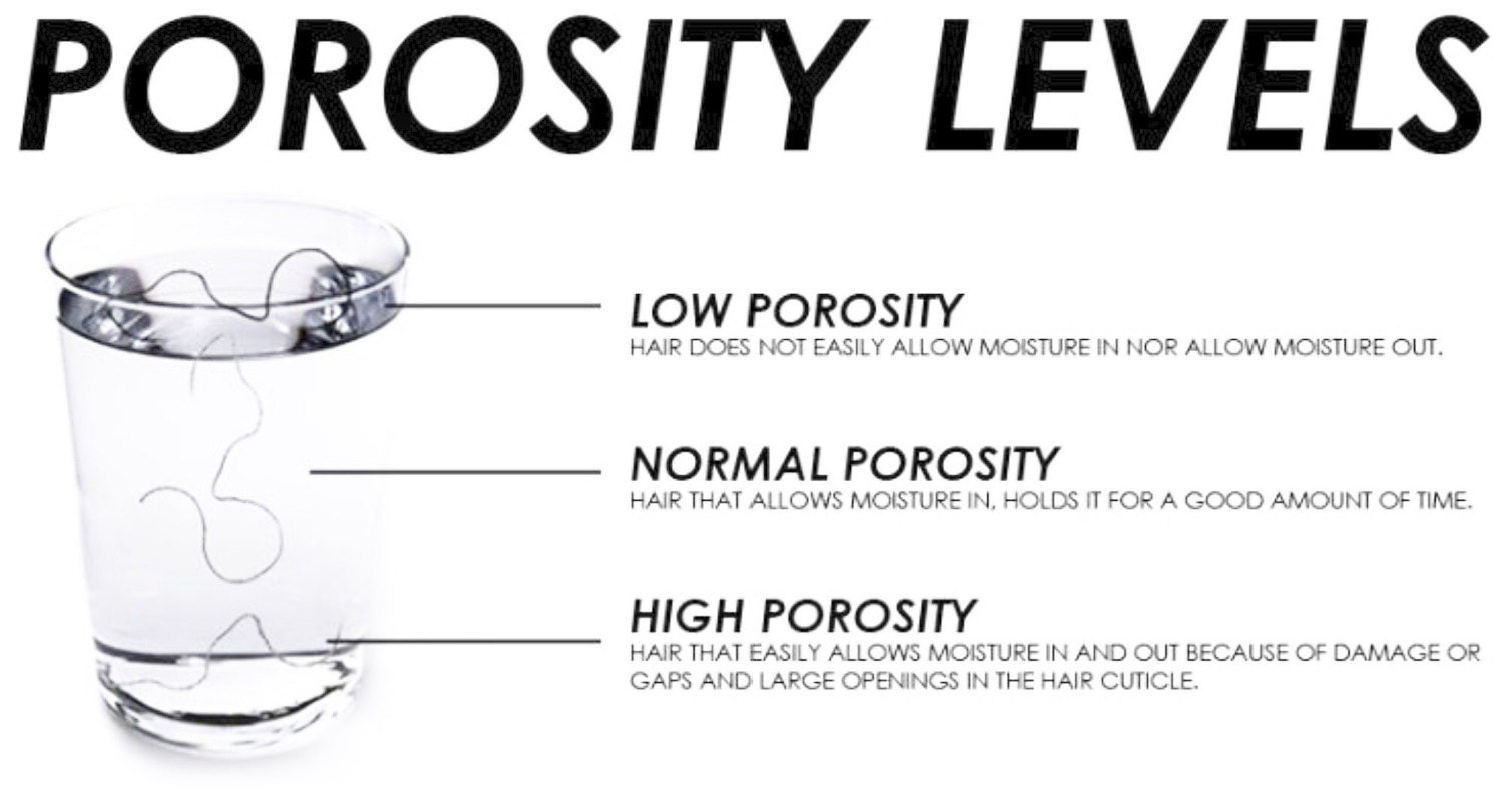 MY POROSITY Specialized for Low Porosity Hair to absorb ...