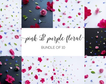 Pink & Purple Floral Stock Images | Flower stock images, flower stock photos, pink flower stock photo, cozy stock photo, moody stock photos