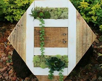 The Trellis // reclaimed pallet wood art // moss // garden // wood round // custom handmade / succulents / ready to ship