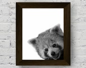 black and white animal wall art, red panda print, nursery animals photography, kids room printable artwork, animal poster, digital download