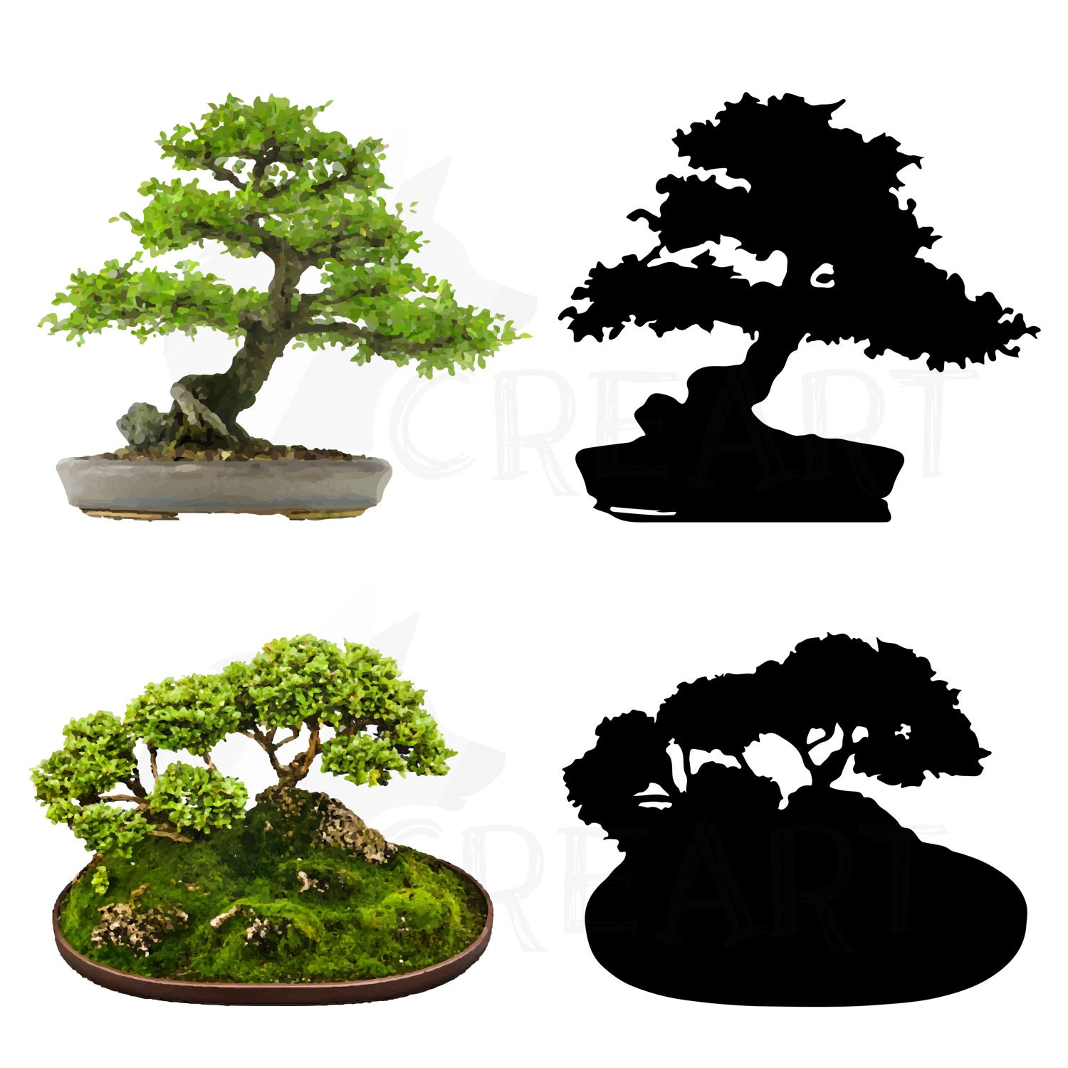 Bonsai tree watercolor and Silhouette pack. Eps, png, jpg ... Bonsai Tree Clipart