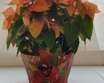 """Medium Wooden Holiday Planter """"RED TARTAN"""" Series"""