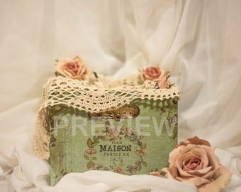 Green With Pink Roses Shabby Chic Newborn Digital Background