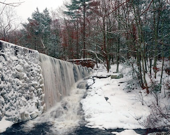 Winter at Cat Hollow