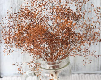 Cooper Real Dried Baby breath , Dried Flowers, Dried Gypsophila Bunch