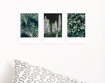 Set of 3 Printable Polaroid Photos| Botanical Wall Decal| Fern| Eucalyptus| Boho Chic Above Bed Decor| Tumblr Room Decor| Dorm Wall Art