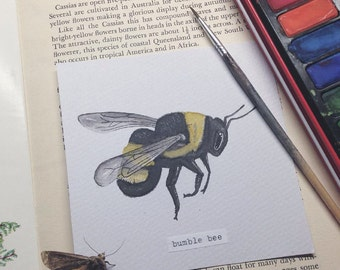 Original Bumble Bee illustration