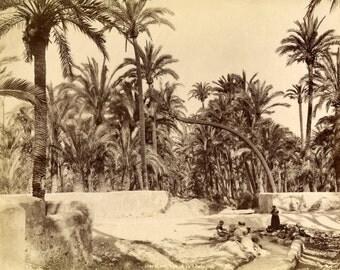 Levy . Elche. 2761. El Palmeral. Vue de la campagne. Women washing in the riverside.