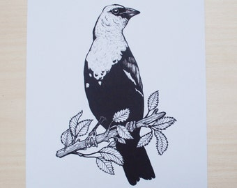 Yellow Headed Blackbird Print // Bird Print