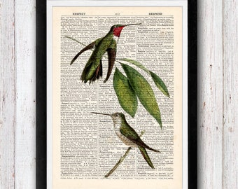 Hummingbird Print Dictionary Art Print Bird Dictionary Art Print Flower Art Upcycled Wall Art Vintage Dictionary Page Book Art Print