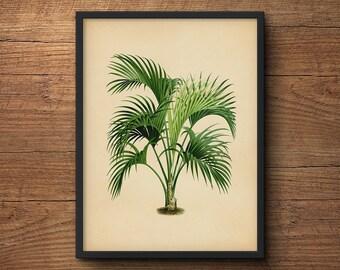Palm Tree Art, Palm Leaf Wall Decor, Palm Leaf Prints, Palm Leaf Wall
