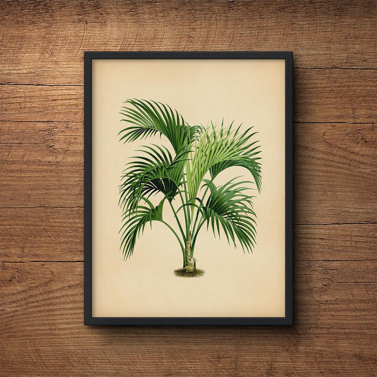 Wall Art Of Leaves : Palm tree art leaf wall decor prints