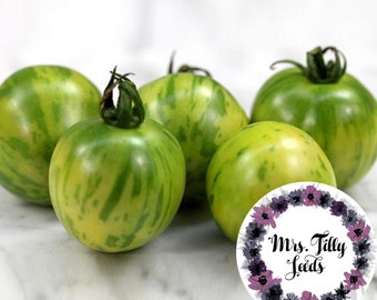 Tomato GREEN ZEBRA tomato seeds seed 10 seeds of favorite variety