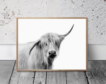 Cow Print Highland Cow Art Print Digital Print Farm Animal Wall Art