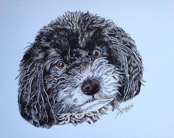 Bichon/Poodle Dog Head, Bichon, Poodle, Dog Drawing, Dog Print, Puppy Drawing, Puppy Print, Playful Dog, Pen Sketch, Colored drawing