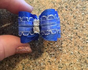 Blue dog bow