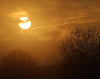 Burning in winter,sunset,ball of fire,pale sunset,falling sun,beautiful,somber,soft,calm