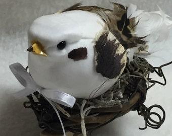 Birdclip (#002)
